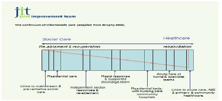 Figure 3 Brophy's Continuum of Intermediate Care