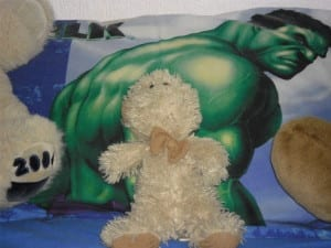 Teddy given to Bob by his foster carer